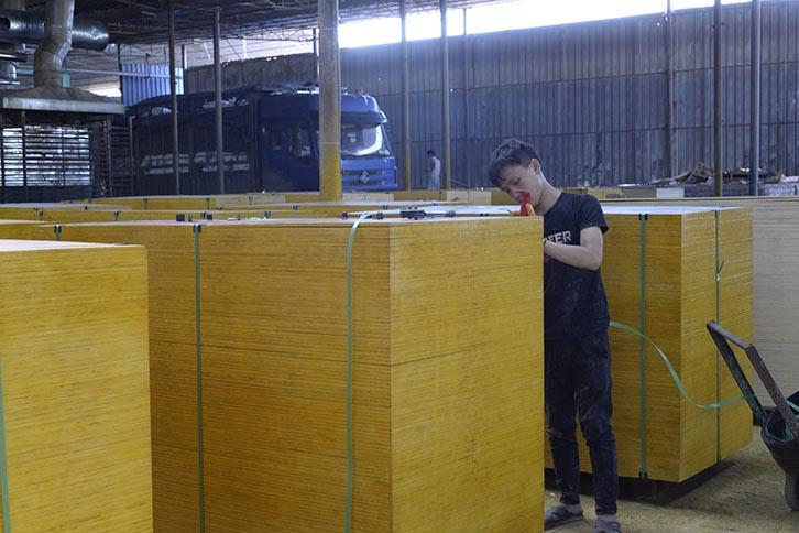 建筑特级木模板1.4厚度足模板