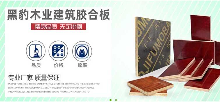 广西南宁十大建筑模板生产厂家排名1