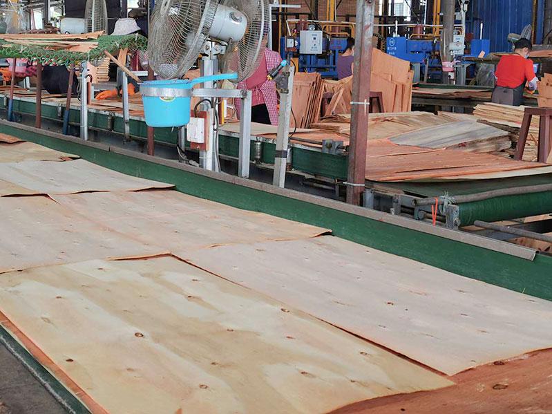 广西嘉龙木业